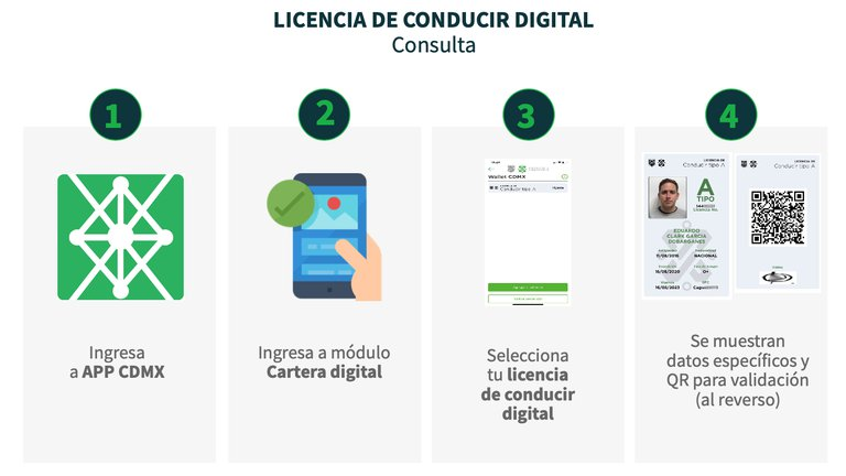 Consulta de Licencia de conducir digital